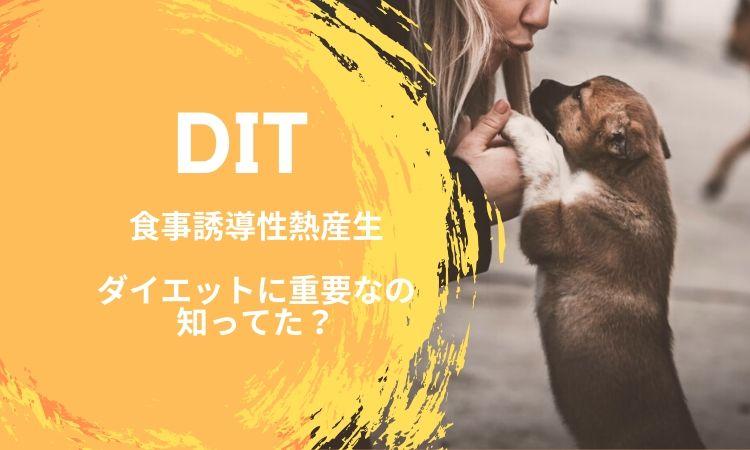 食事誘導性熱産生(DIT)がダイエットに重要なの知ってます?DITとは