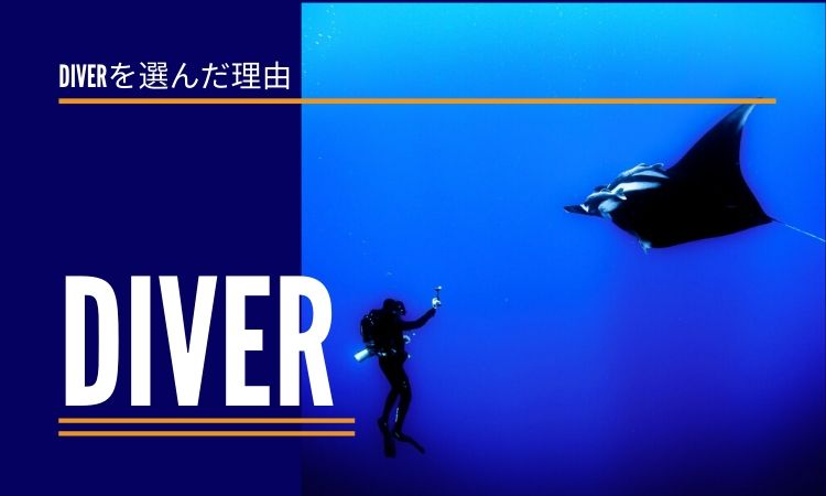 start_wordpress_theme_diver
